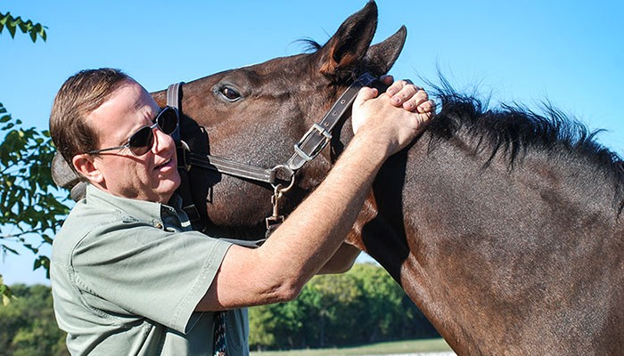 Dr. Keith performing chiropractic care on a horse